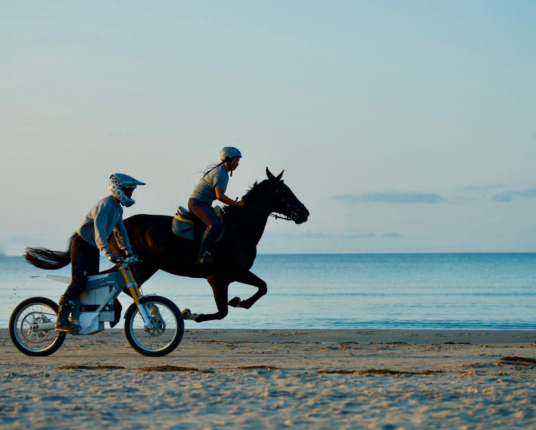 HORSE  <br>POWER